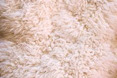 White fur as abstract background Stock Photos