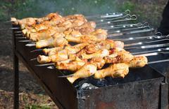 Appetizing shish kebab on  grill. Picnic Stock Photos