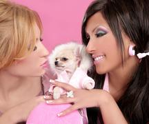 Fashion doll women with chihuahua dog pink 1980s Stock Photos