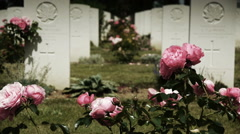 Pink roses at a canadian memorial cemetery Stock Footage