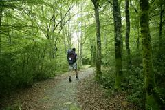 Adventure hiking on beech forest of Pyrenees Stock Photos