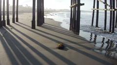 Sea birds feeding near a fishing pier aerial drone footage Stock Footage