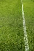 football grass field camp texture wite line - stock photo