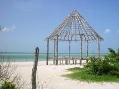 hut palapa construction wood structure Holbox - stock photo