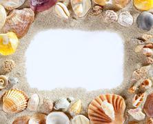 Border frame summer beach shell blank copy space Stock Photos