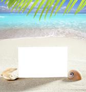 beach vacation sand pearl shells snail blank paper - stock photo
