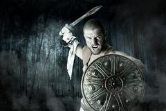 Gladiator warrior in a forrest Stock Photos