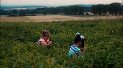 Children collect seeds in the field Stock Footage