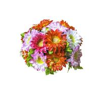 Beautiful artificial  bouguet flowers on white Stock Photos