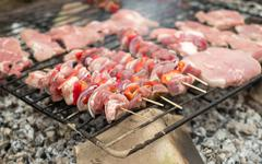 Appetizing meat on a barbecue - stock photo