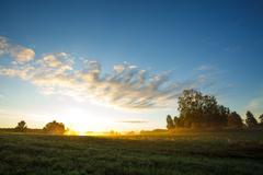 Tranquil grassland at sunrise Stock Photos