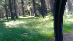 The ride over bumps on the bike in the woods Stock Footage