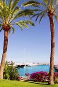 Calvia Puerto Portals Nous bougainvilleas garden in Mallorca - stock photo