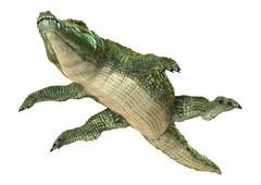 Crocodile - stock illustration