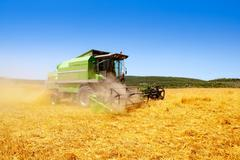 Combine harvester harvesting wheat cereal - stock photo