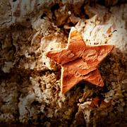 bark star shape christmas symbol on cork - stock photo