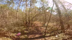 Cycylist Moving In Autumn Forest Stock Footage