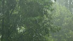 Summer rain showers, heavy rainstorm in summer season Stock Footage
