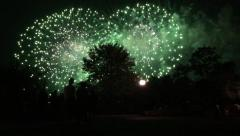 Silhouetted people and fireworks Stock Footage
