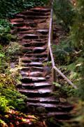 Old Wet Stone Steps Kuvituskuvat