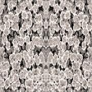 Abstract gray digitally rendered pattern resembling brain matter Piirros