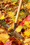 Garden Work in autumn - stock photo