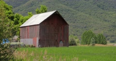 Barn and butterflies - stock footage