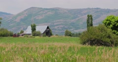 Barn and grass wide shot Stock Footage