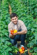 Agronomist holding vegetables and points to the camera - stock photo