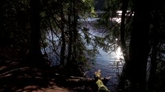 One side of trail view at Buntzen lake Stock Footage
