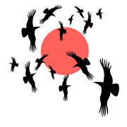 Black crows circling in the sun Stock Illustration