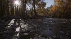 Autumn River Flow Stock Footage