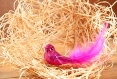 Bird in straw nest with pink feathers and glitter Stock Photos