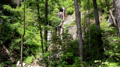 waterfall mountain trees cliff - stock footage