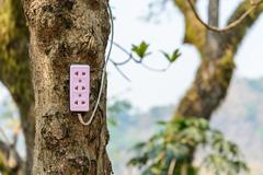 Plug socket on tree, ecology concept. - stock photo
