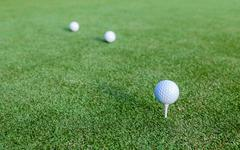 Golf ball and tee on green grass during training at golf club. Stock Photos