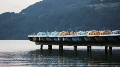Pedal Boats Docked on a Lake - stock footage