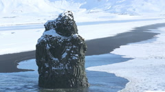 Volcanic rock near Vik in South Iceland Stock Footage