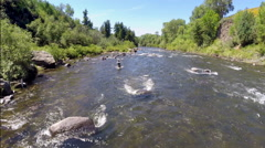 Fly Fisherman Casting in River - stock footage