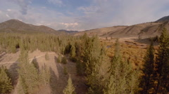 Autumn Forest River Aerial Idaho Stock Footage