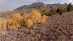 Idaho Mountain Golden Autumn Aerial Stock Footage