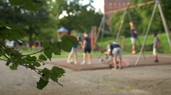 children playing on the swing: people out of focus footage - stock footage