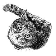 Little cat Stock Illustration