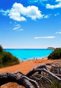 Cala Nova beach in Ibiza island with turquoise water - stock photo