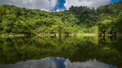 Trees in the water on the Twin Lakes of Balinsasayao, Philippines Stock Footage