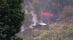 Fire In A Jungle Ecological Disaster Stock Footage
