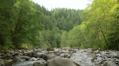 Follow Forest River Flowing Slow Motion Over Small Waterfalls Stock Footage