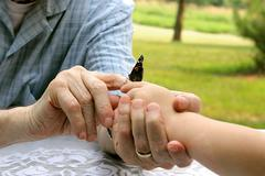 Grandpa's Hands Giving Butterfly to Child - stock photo