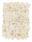Stock Illustration of Handmade paper with seeds and petals inside