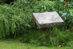 blank pedestal cement stone in green garden - stock photo